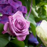 Parco_botanico_fiori_09