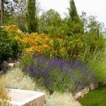 colori_e_profumi_giardino_02