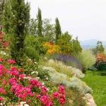 colori_e_profumi_giardino_03