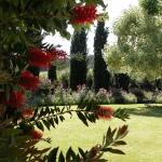 colori_e_profumi_giardino_13
