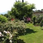 colori_e_profumi_giardino_14