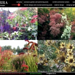 colori_e_profumi_giardino_17