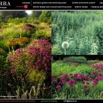 colori_e_profumi_giardino_19