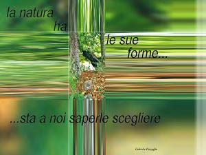 la_natura_ha_le_sue_forme