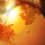 colori_autunno_04