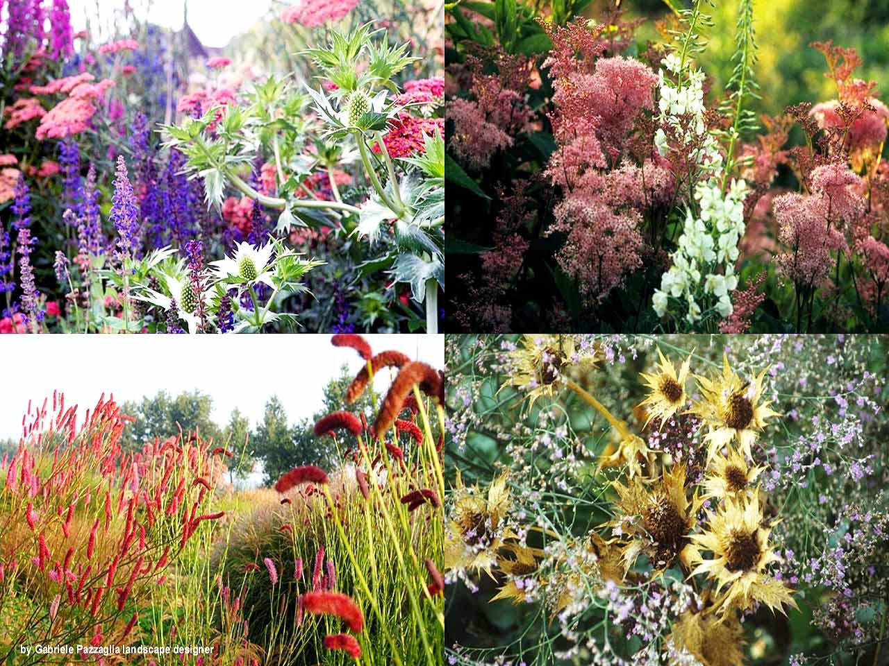 Giardini e parchi fiori e colori mediterranei gabriele - Giardini e fiori ...