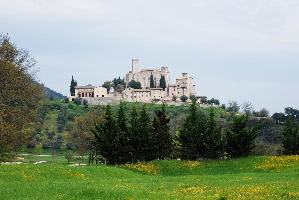 eco_museo_tre_valli_castello_antognolla_01