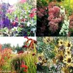 giardino_parco_fiori_01