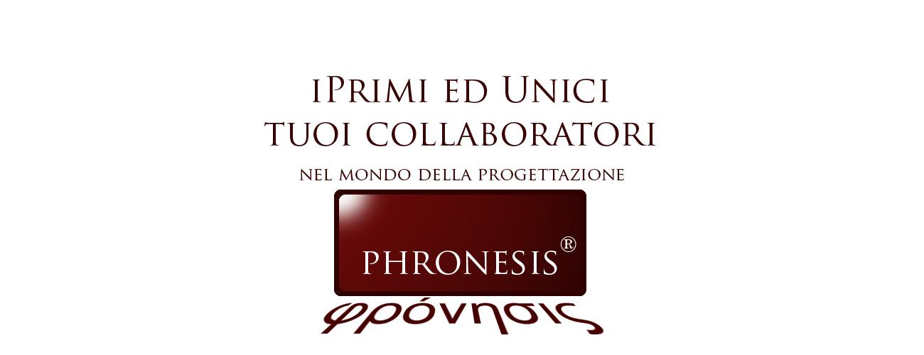pronesis_slide_0111