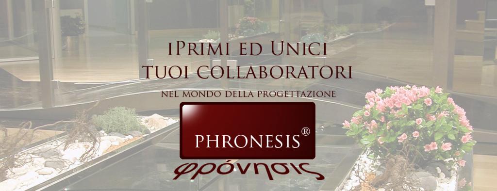 pronesis_slide_19