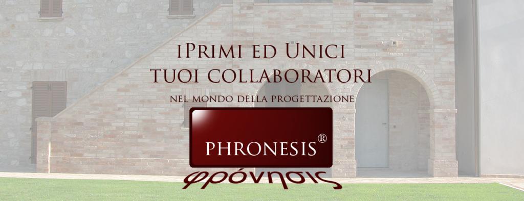 pronesis_slide_20
