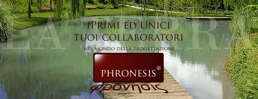 pronesis_slide_21