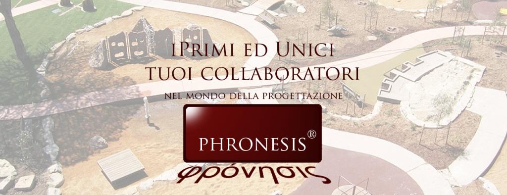 pronesis_slide_28
