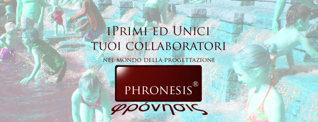 pronesis_slide_29