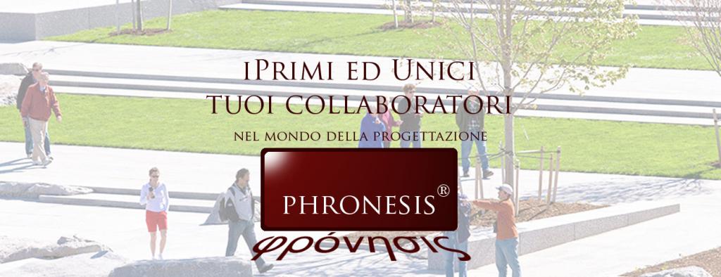 pronesis_slide_30