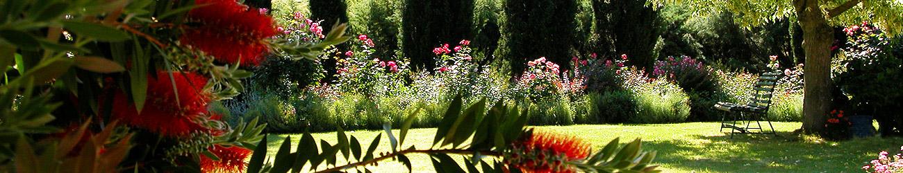 pronesis_slider_11_giardino_di_rose